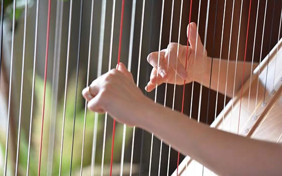 Harp technique
